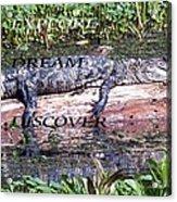Thr Gator Acrylic Print