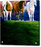 Three Amigos Acrylic Print by Hanne Lore Koehler
