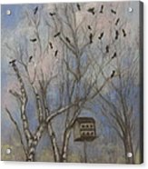 Three And Twenty Blackbirds Acrylic Print
