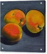 Three Apricots Acrylic Print