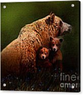 Three Bears Acrylic Print by Robert Foster