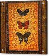 Three Butterflies Two Acrylic Print