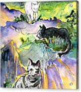 Three Cats On The Penon De Ifach Acrylic Print