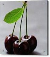 Three Cherries On A Stem Acrylic Print