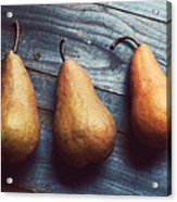 Three Gold Pears Acrylic Print
