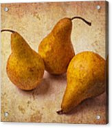 Three Golden Pears Acrylic Print