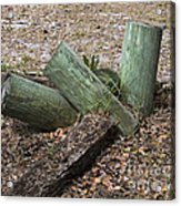 Three Green Logs Acrylic Print