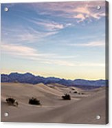 Three In The Sand Acrylic Print by Jon Glaser