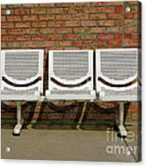 Three Is A Crowd Acrylic Print