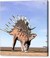 Three Kentrosaurus Dinosaurs Standing Acrylic Print by Elena Duvernay