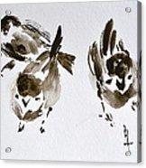 Three Little Birds Perch By My Doorstep Acrylic Print