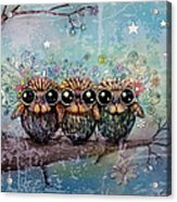 Three Little Night Owls Acrylic Print