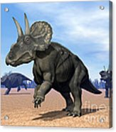 Three Nedoceratops In The Desert Acrylic Print