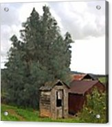 Three Old Sheds Acrylic Print by Charlette Miller