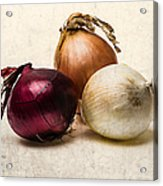 Three Onions - 1 Acrylic Print