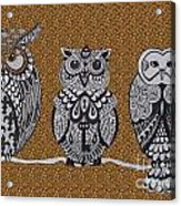 Three Owls On A Branch Leopard Print Acrylic Print