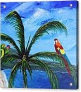 Three Parrots Acrylic Print