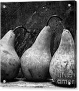 Three Pear Still Life Black And White Acrylic Print by Edward Fielding