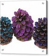 Three Pineapples Acrylic Print
