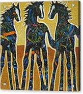 Three Ponies Acrylic Print by Lance Headlee