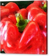 Three Red Peppers Acrylic Print