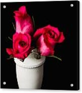 Three Roses Acrylic Print