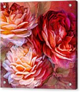 Three Roses Red Greeting Card Acrylic Print