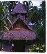 Three Story Hut 2 In Color Acrylic Print