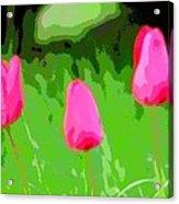 Three Tulips - Painting Like Acrylic Print