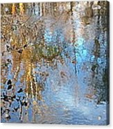 Through My Eyes Acrylic Print by Delona Seserman