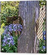Through The Fence Acrylic Print