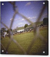 Through The Fence Pastel Chalk 2 Acrylic Print