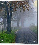 Through The Fog Acrylic Print