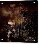 Through The Forest Path Acrylic Print