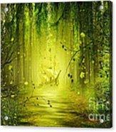 Through The Jungle Acrylic Print