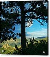 Through The Pines Acrylic Print