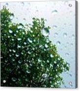 Through The Rain Acrylic Print