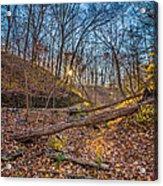 Thru The Woods Acrylic Print