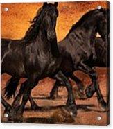 Thundering Hooves Acrylic Print by Jean Hildebrant