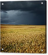 Thunderstorm Clouds Over Wheat Field Acrylic Print