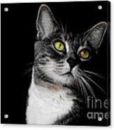 Ti Min Acrylic Print