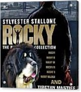 Tibetan Mastiff Art Canvas Print - Rocky Movie Poster Acrylic Print