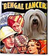 Tibetan Terrier Art - The Lives Of A Bengal Lancer Movie Poster Acrylic Print