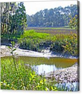 Tidal Creek In The Savannah Acrylic Print