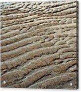 Tidal Footprint Acrylic Print