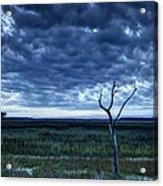 Tidal Marsh View Acrylic Print