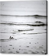 Tide Rolling In Acrylic Print