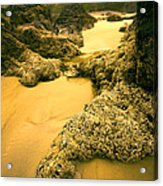 Tidepools From Above Acrylic Print