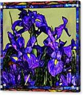 Tiffany Style Blue Iris Acrylic Print