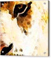 Tiger Art - Pride Acrylic Print by Sharon Cummings